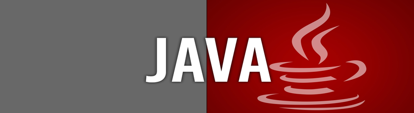 Java Programming Course in Delhi NCR